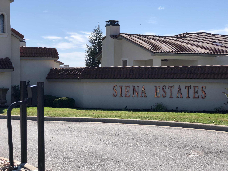 Lot 4 B Siena Boulevard Branson, MO 65616