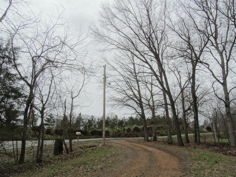 299 Warner Road Crane, MO 65633