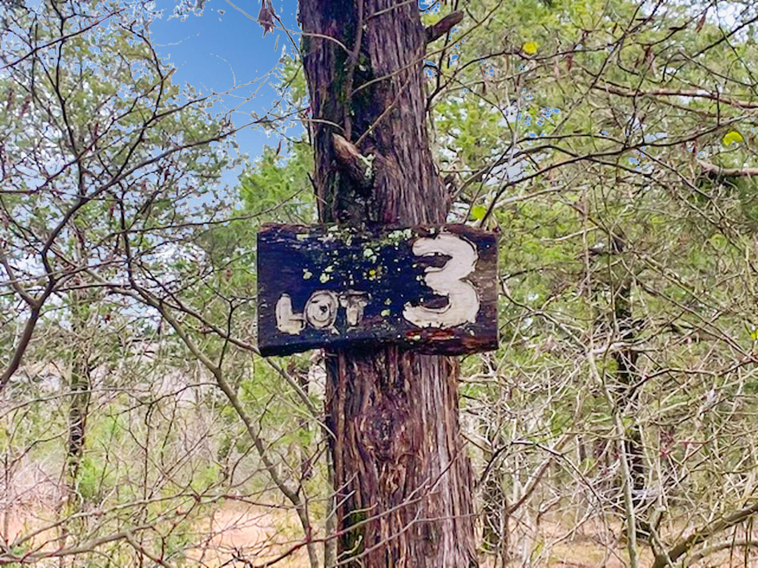 Tbd Mills Hollow Road Branson, MO 65616