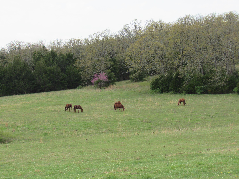 0 Countryside Lane