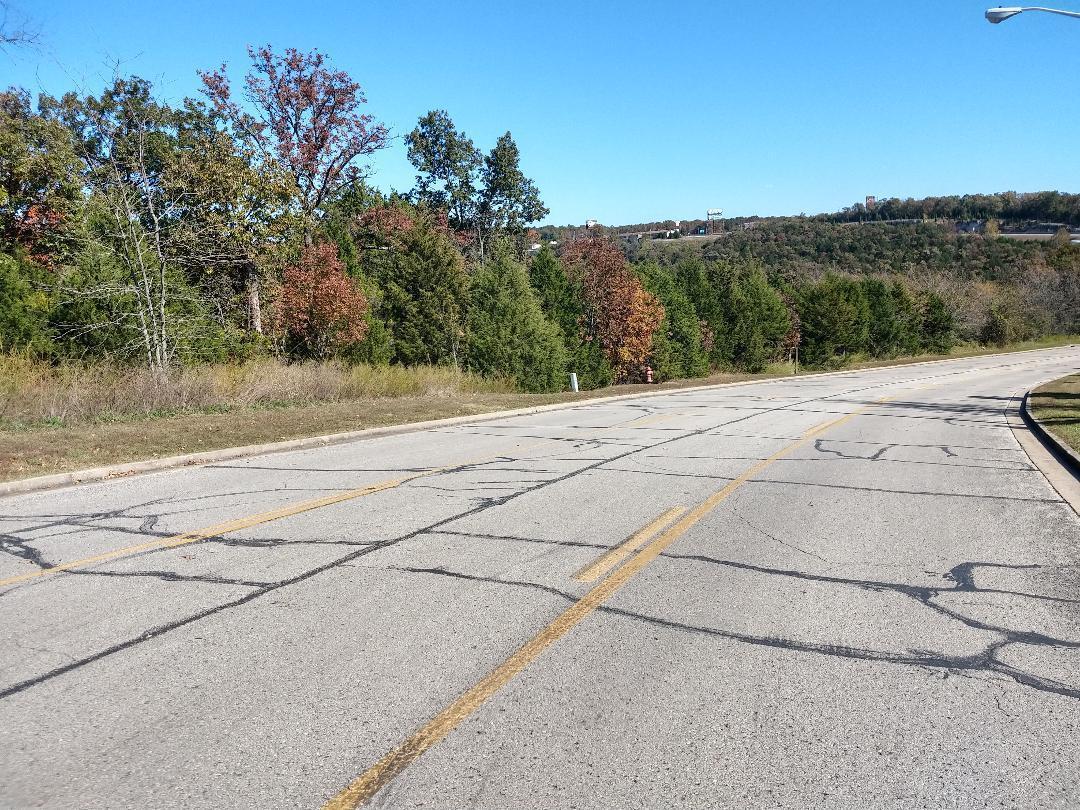 000 Ozark Scenic Drive(2.24 Acres) Branson, MO 65616