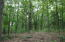 160 Acres M/L is Mostly Wooded with Marketable Timber