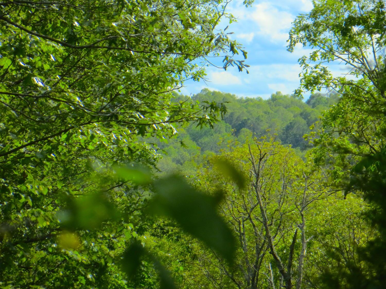 000 Trace Creek Trail