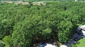 Lot 25 Briarwood, Marshfield, MO 65706