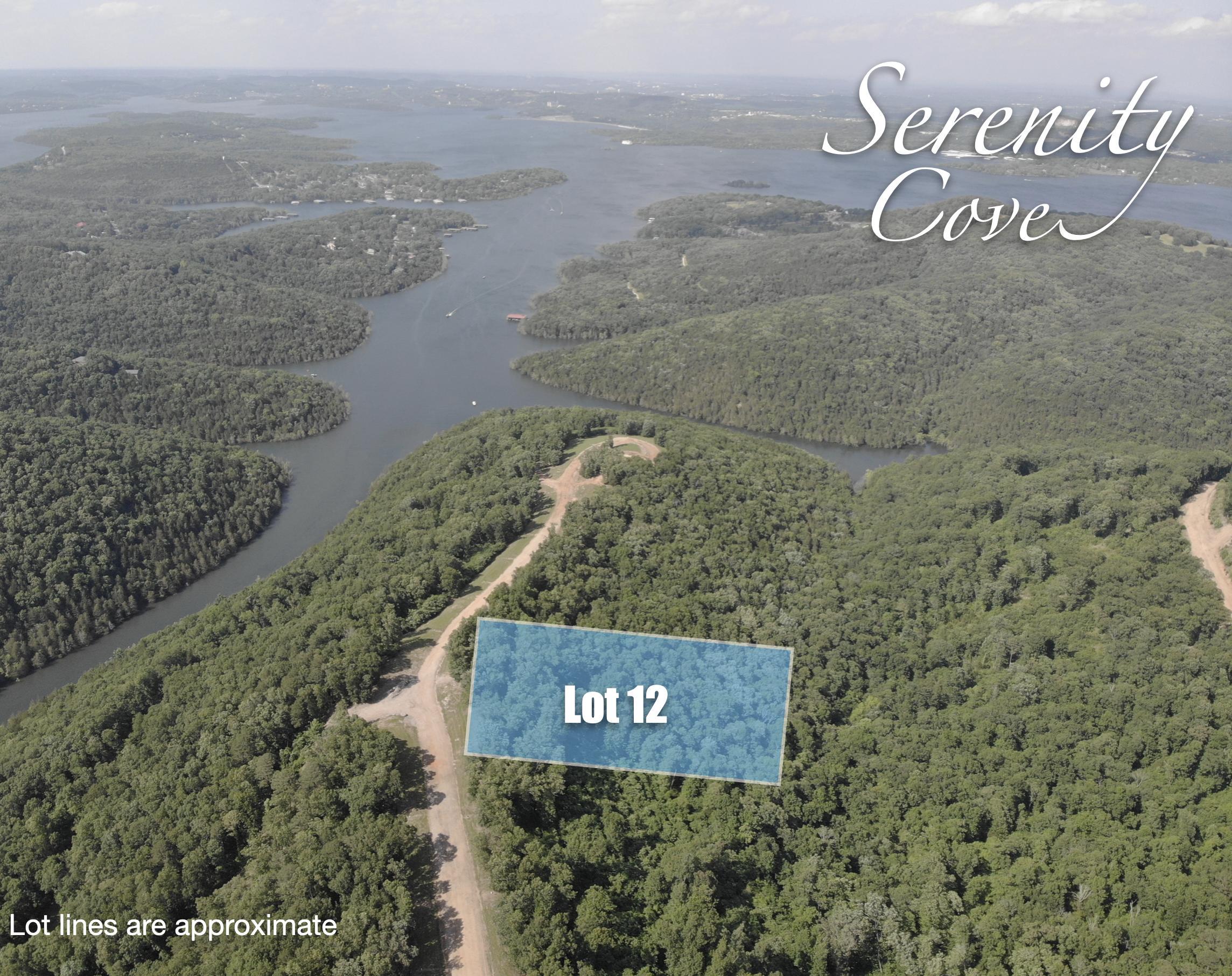 Lot 12 Serenity Cove Drive Blue Eye, MO 65611