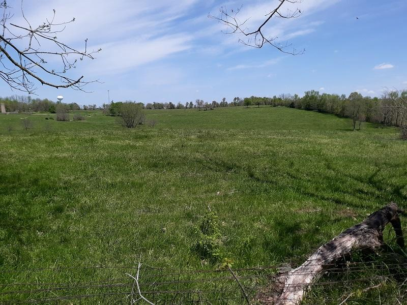 Tract 7 South Farm Rd Battlefield, MO 65619
