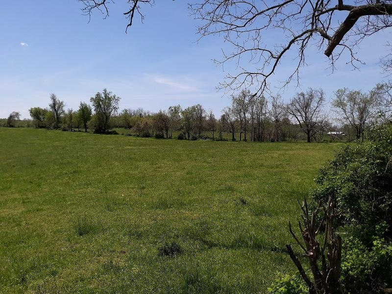 Tract 8 West Farm Rd Battlefield, MO 65619