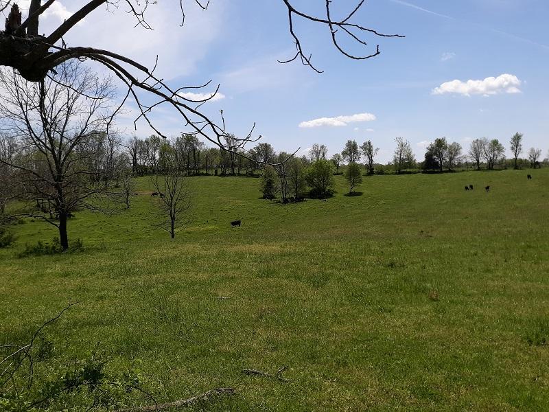 Tract 9 West Farm Rd Battlefield, MO 65619