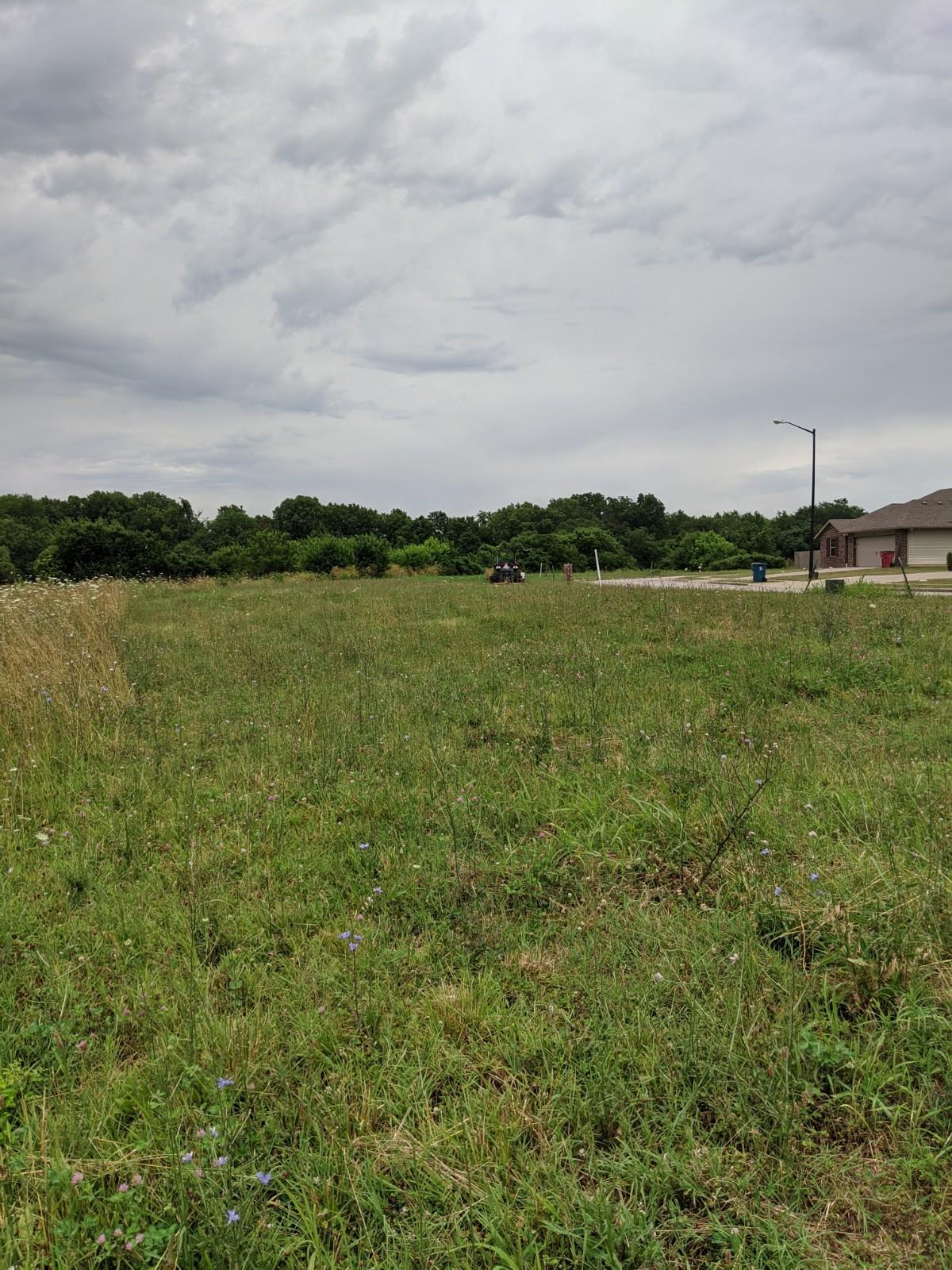 285 East Garnet Drive UNIT Lot 8 Republic, MO 65738