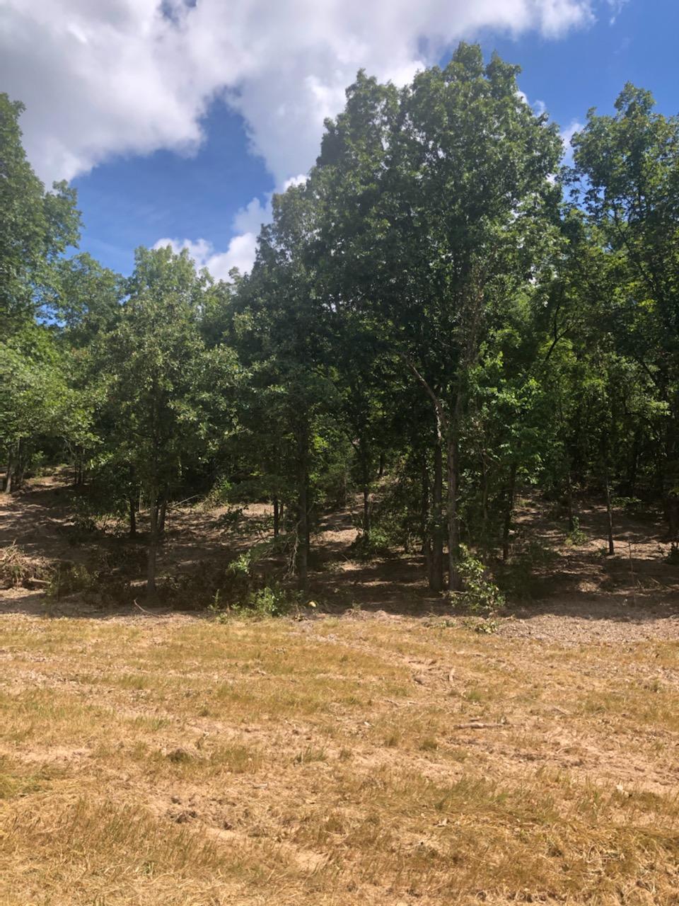 Lot 2 Seveno Ridge Highlandville, MO 65669