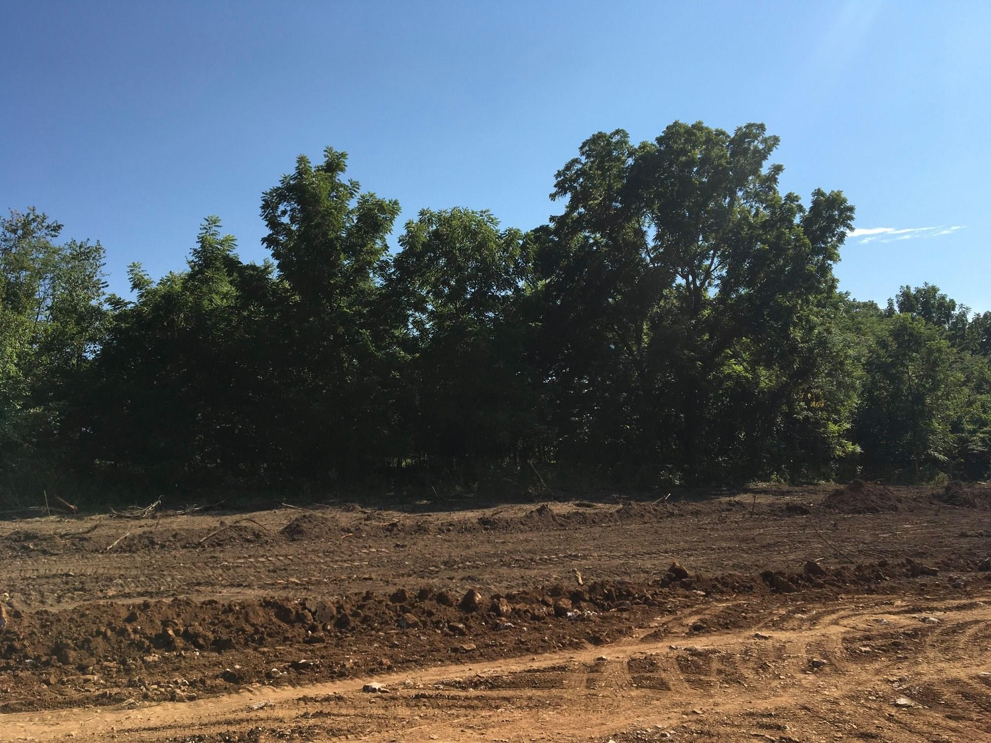 Phase 2 Stone Creek Subdivision Road Willard, MO 65781