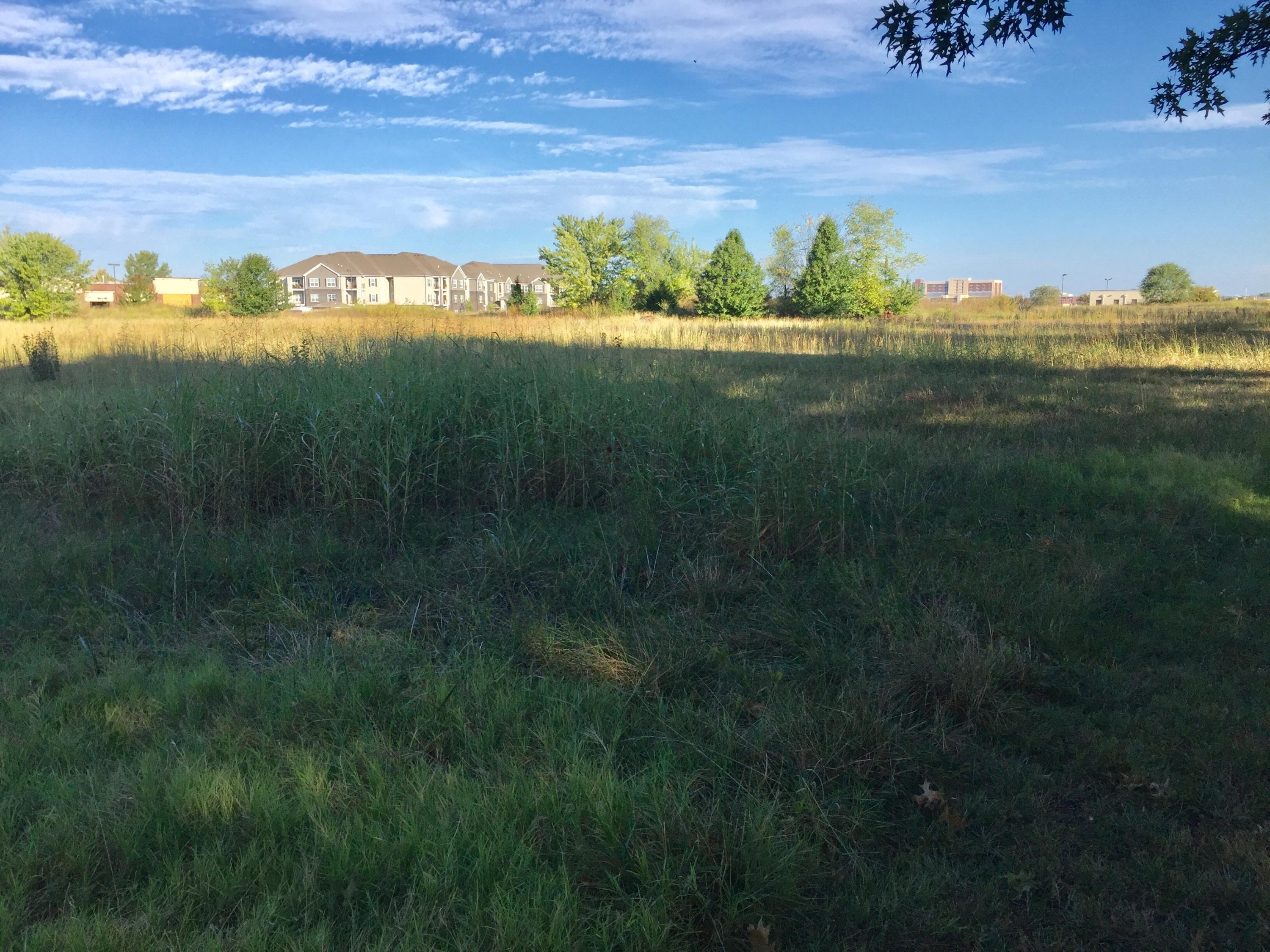 4431 Blk South Fremont Avenue Springfield, MO 65804