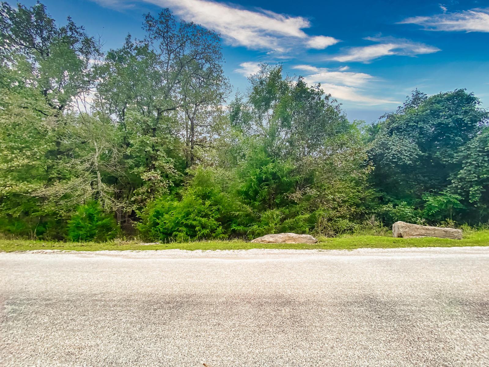 424 Meadow Lane Branson, MO 65616