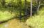Springfed creek