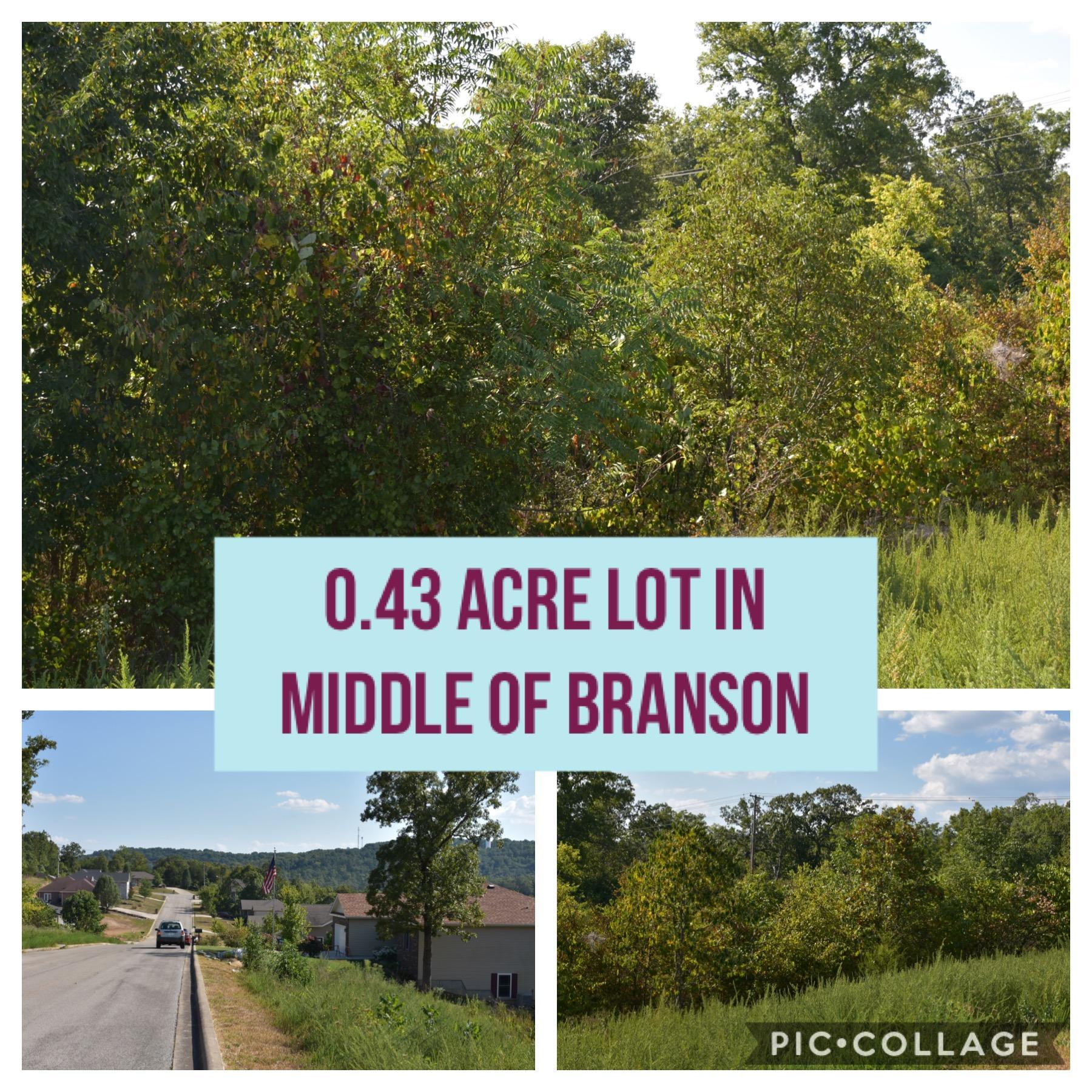 000 Anne Lane UNIT 21 Branson, MO 65616