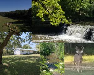 10295 County Road 458a, Birch Tree, MO 65438
