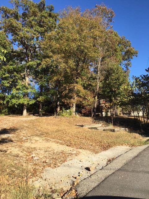 172 Willow Lane Forsyth, MO 65653