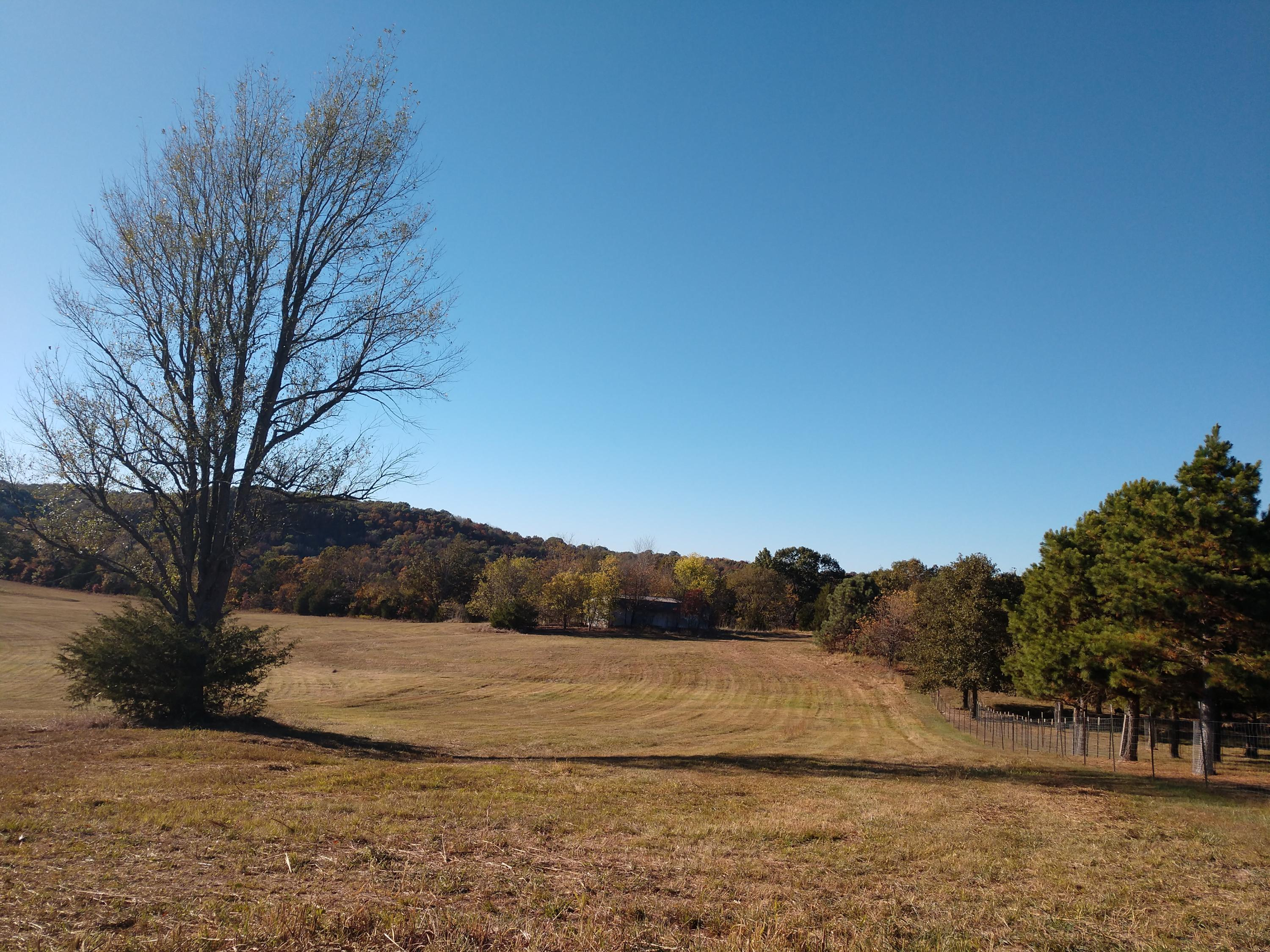 Lot # 42 Riverside Drive Galena, MO 65656