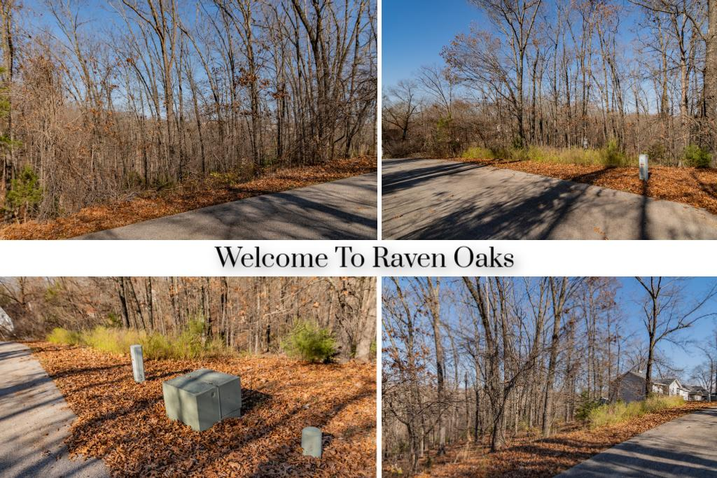 Lot #1 Raven Oak Kimberling City, MO 65686