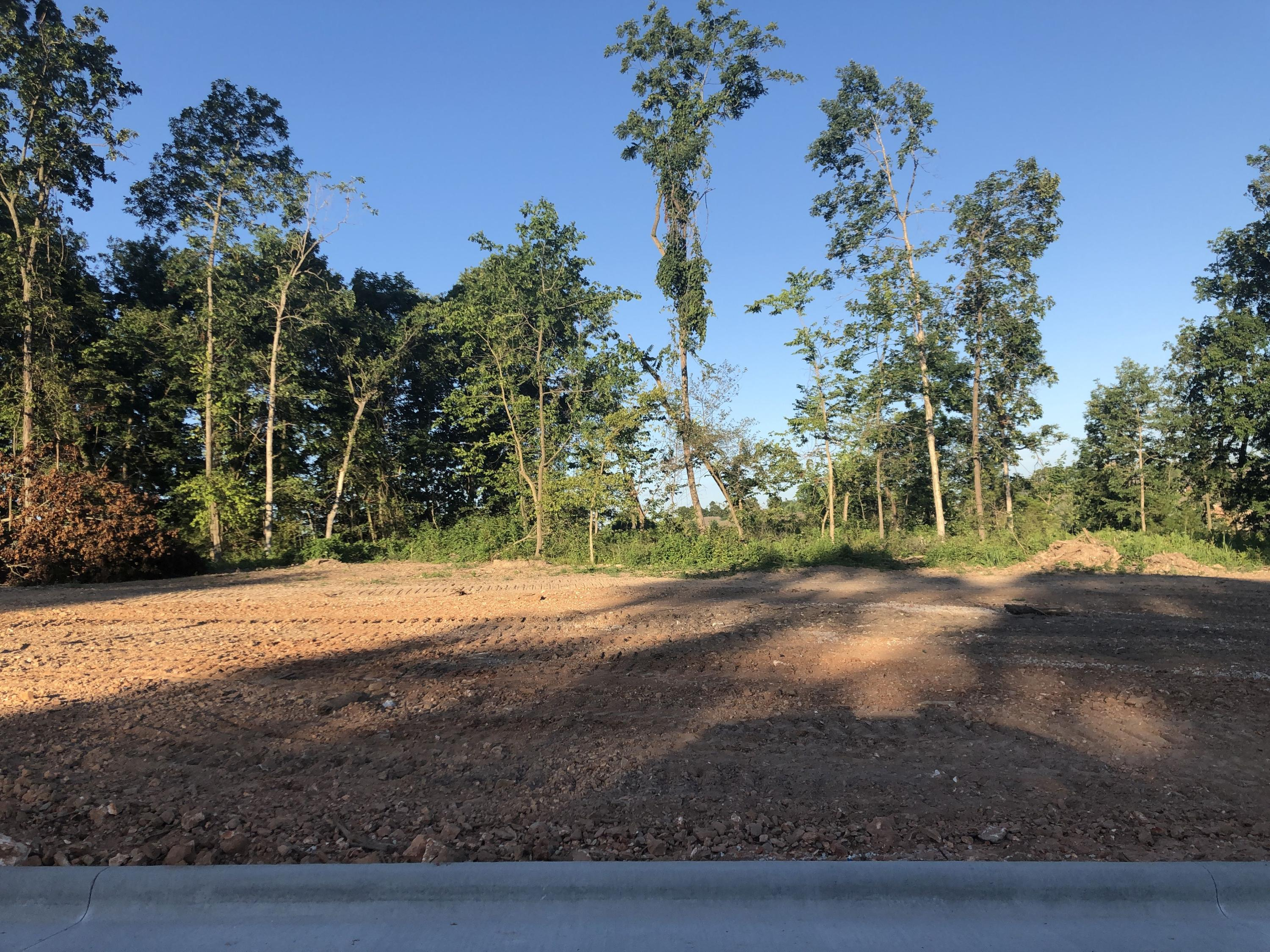Lot 20 South Kings Avenue Springfield, MO 65810