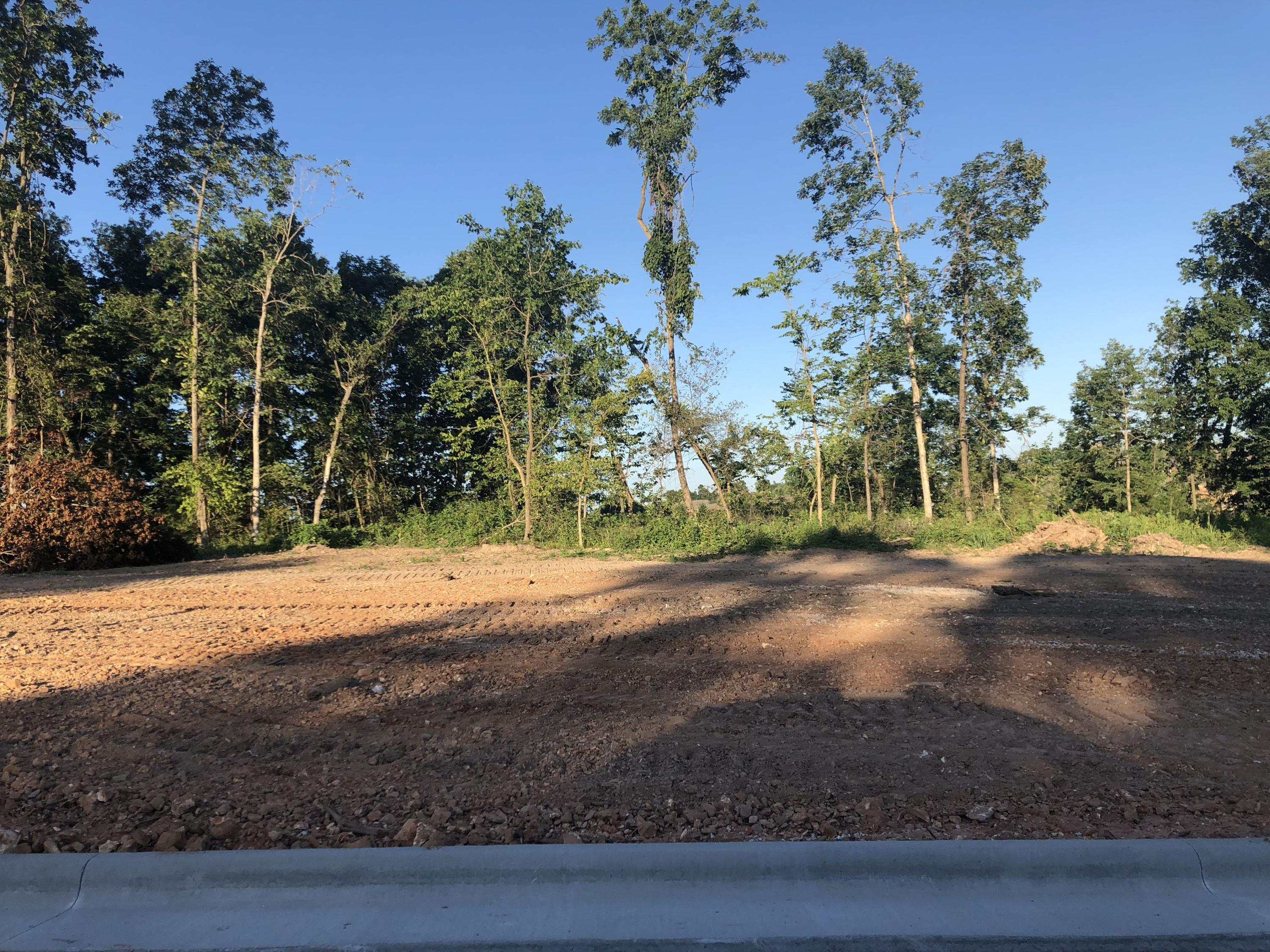 Lot 23 South Kings Avenue Springfield, MO 65810