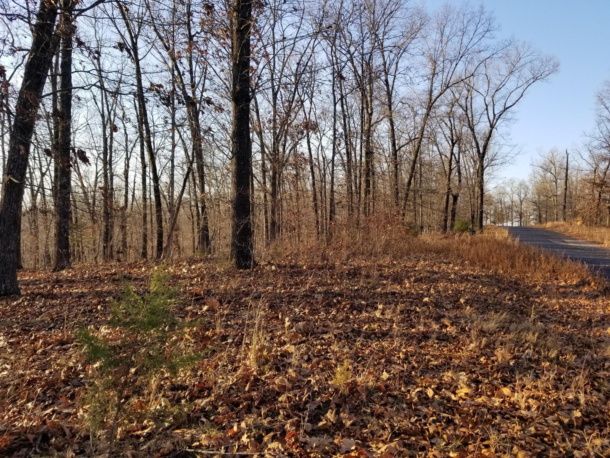 Lot 9 Sherwood Lane, Saddlebrooke, Missouri 65630