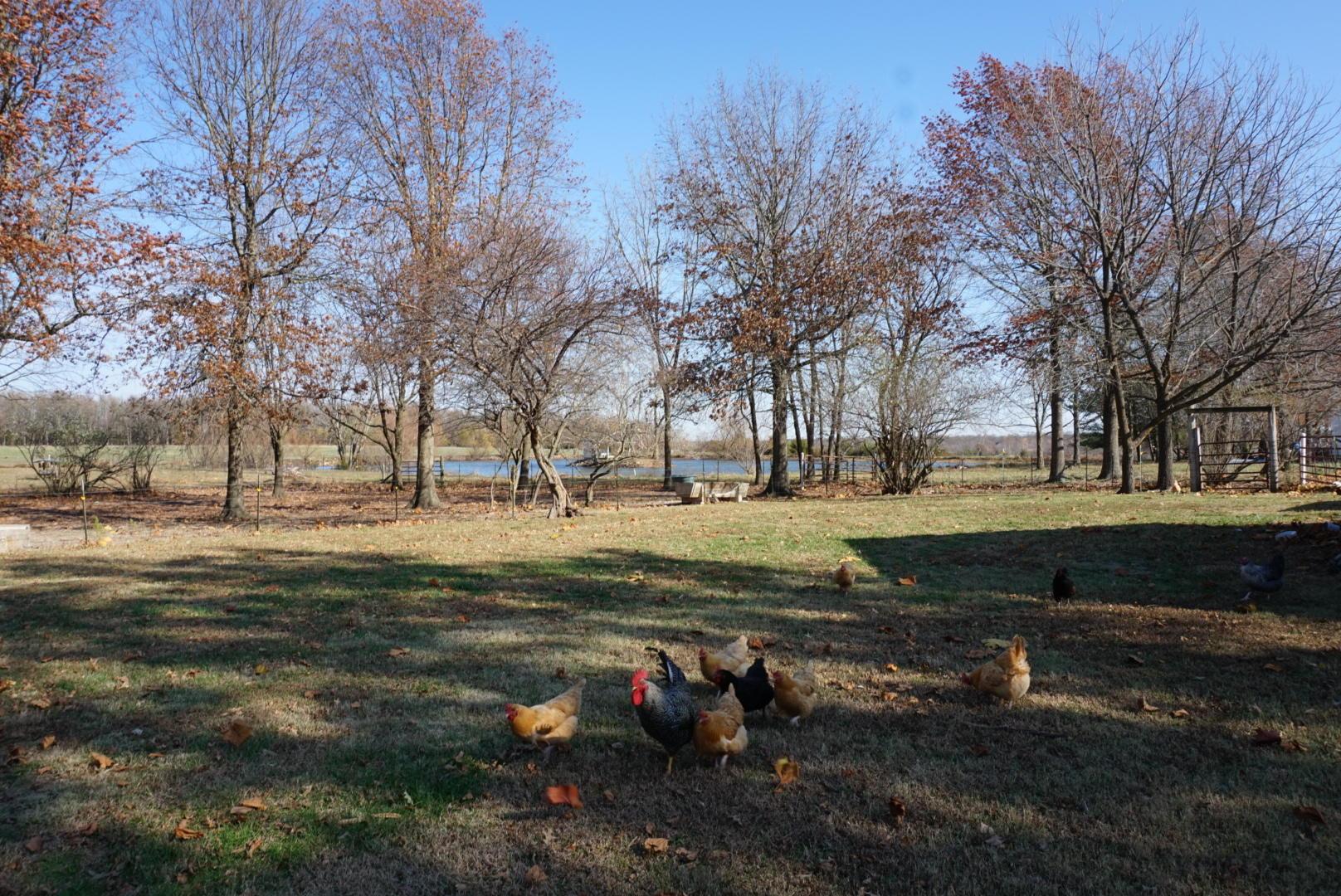 13655 West Farm Rd Republic, MO 65738