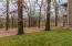 Huge lot, wooded