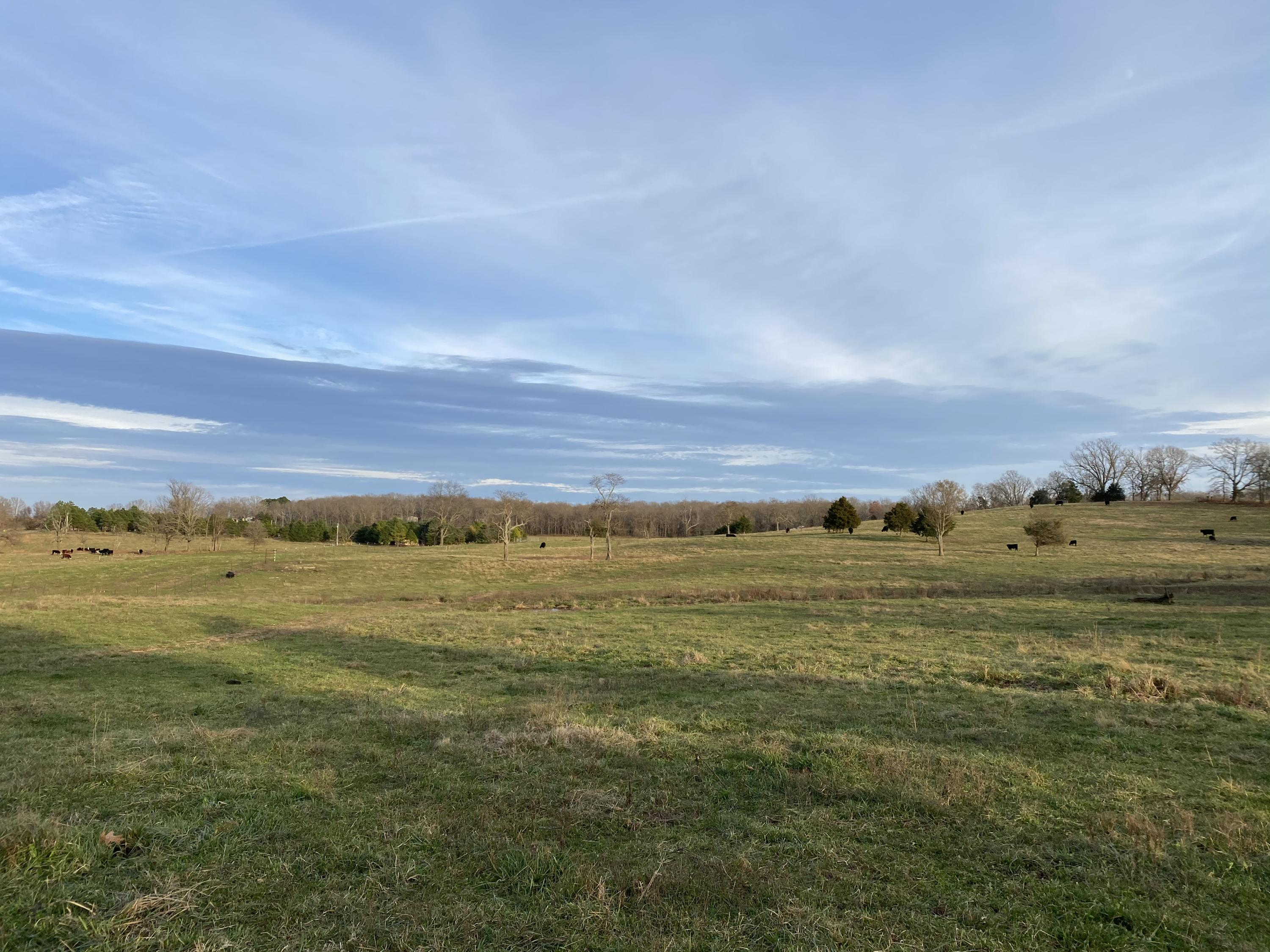 140+- Acre State Route Ad West Plains, MO 65775