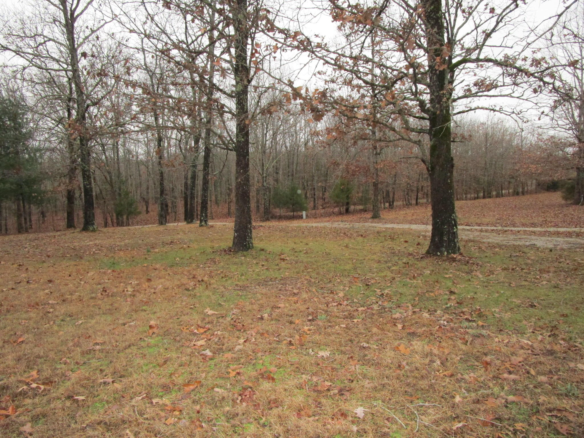 6569 Private Road Mountain View, MO 65548