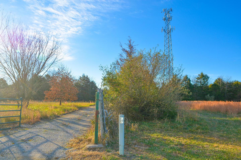 7481 North Farm Road Strafford, MO 65757