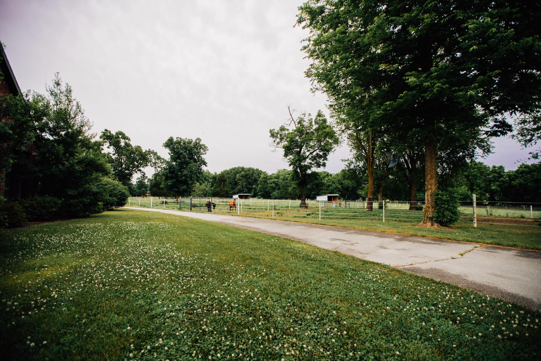 6050 East Palomino Lane Rogersville, MO 65742