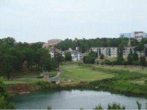 120 Spring Creek UNIT #6 Branson, MO 65616