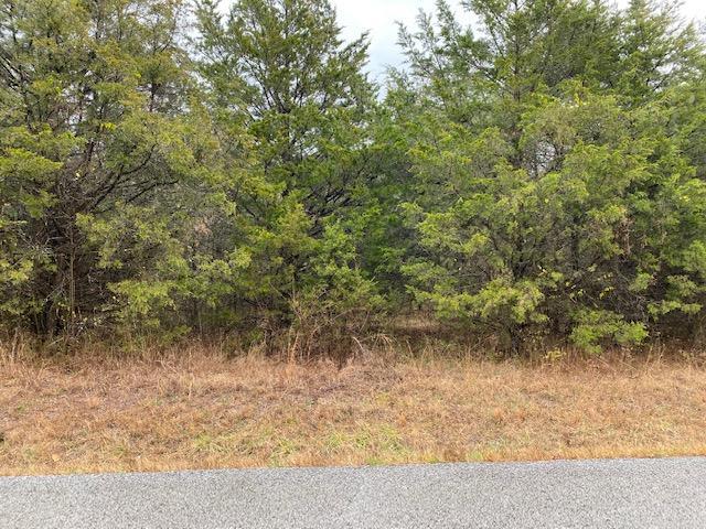 #2 3rd & 199 Turkey Mountain Estates Shell Knob, MO 65747