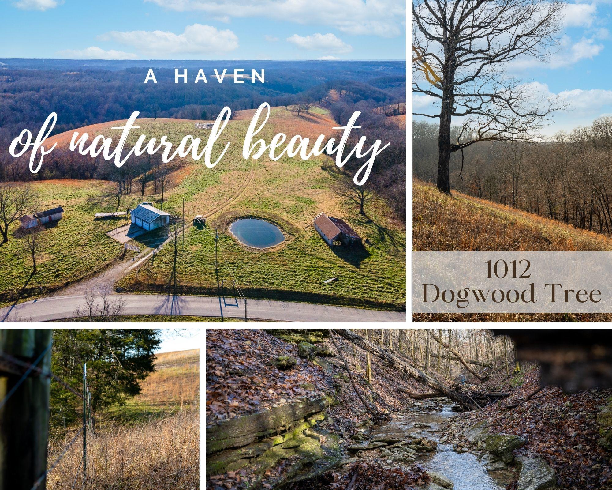 1012 Dogwood Tree Road Reeds Spring, MO 65737