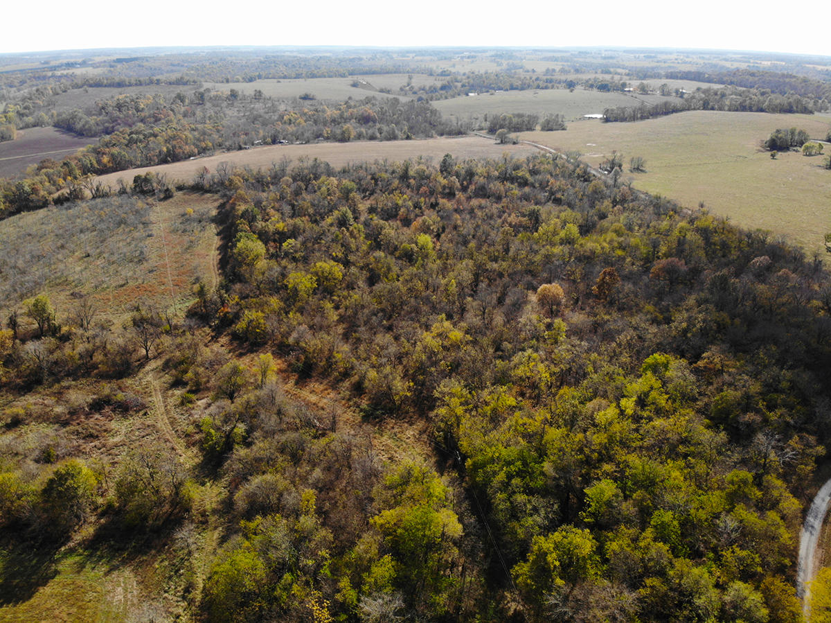 24 Old Mill Lane South Greenfield, MO 65752
