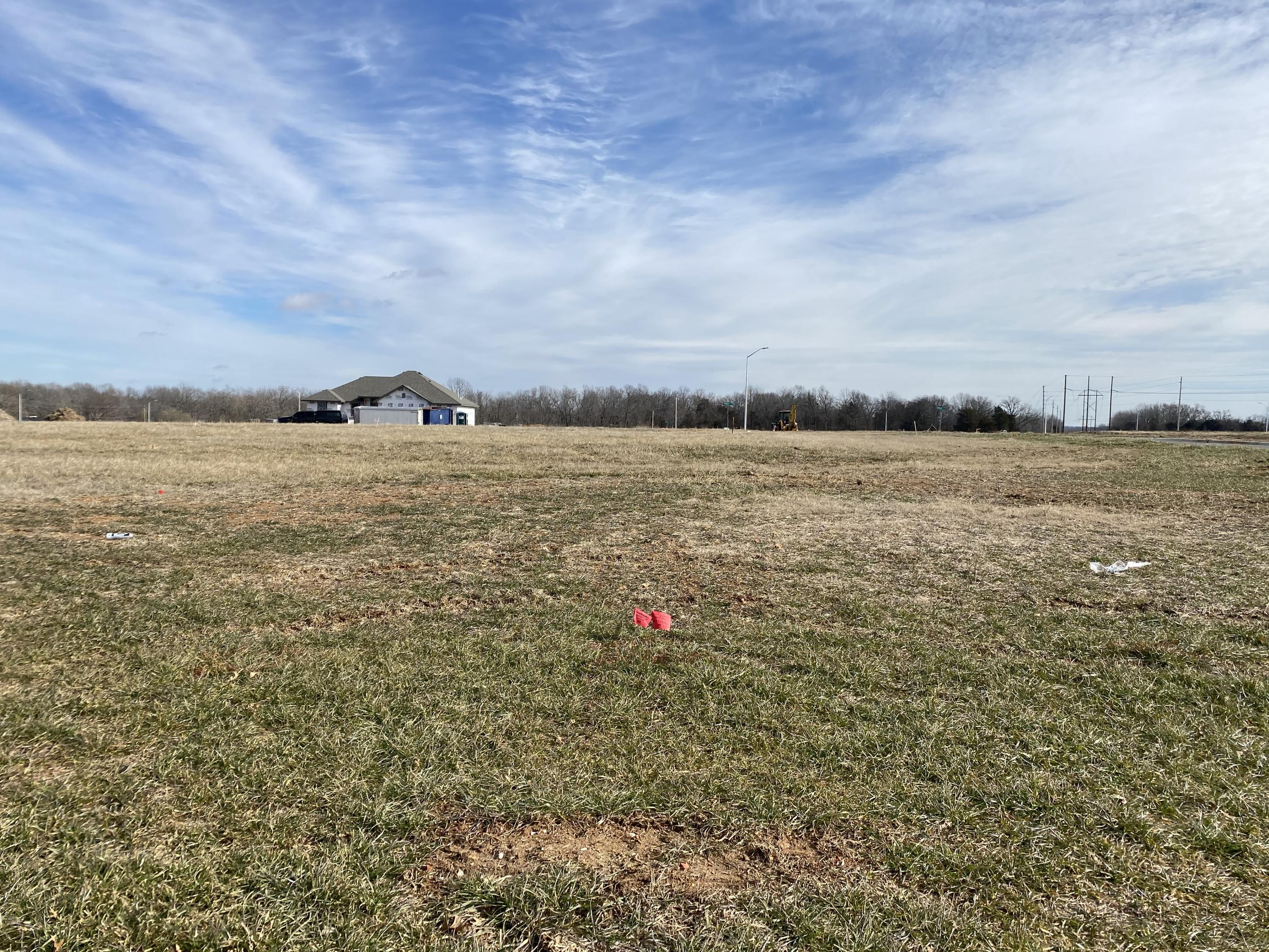6036 South Crescent Road UNIT Lot 51 Battlefield, MO 65619