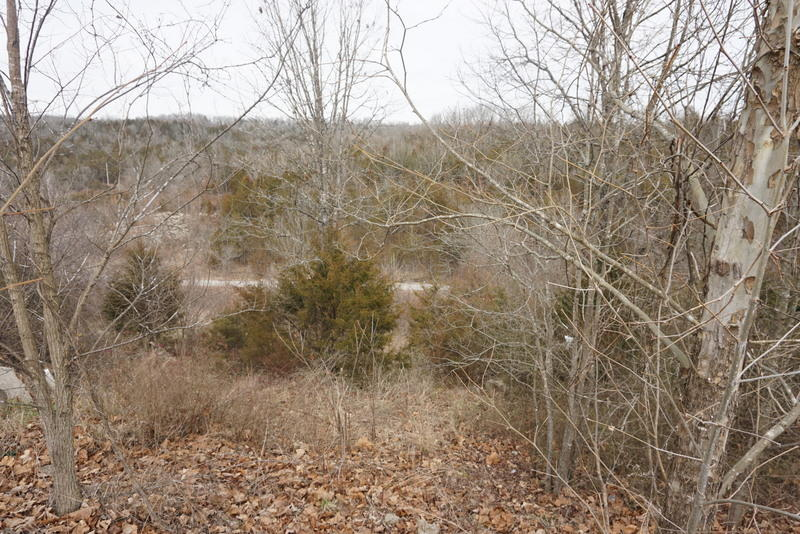 000 Spring Meadow Parkway Branson, MO 65616
