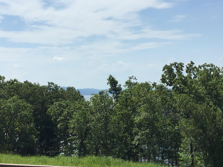 172 Dogwood Park Trail UNIT #1106 Indian Point, MO 65616