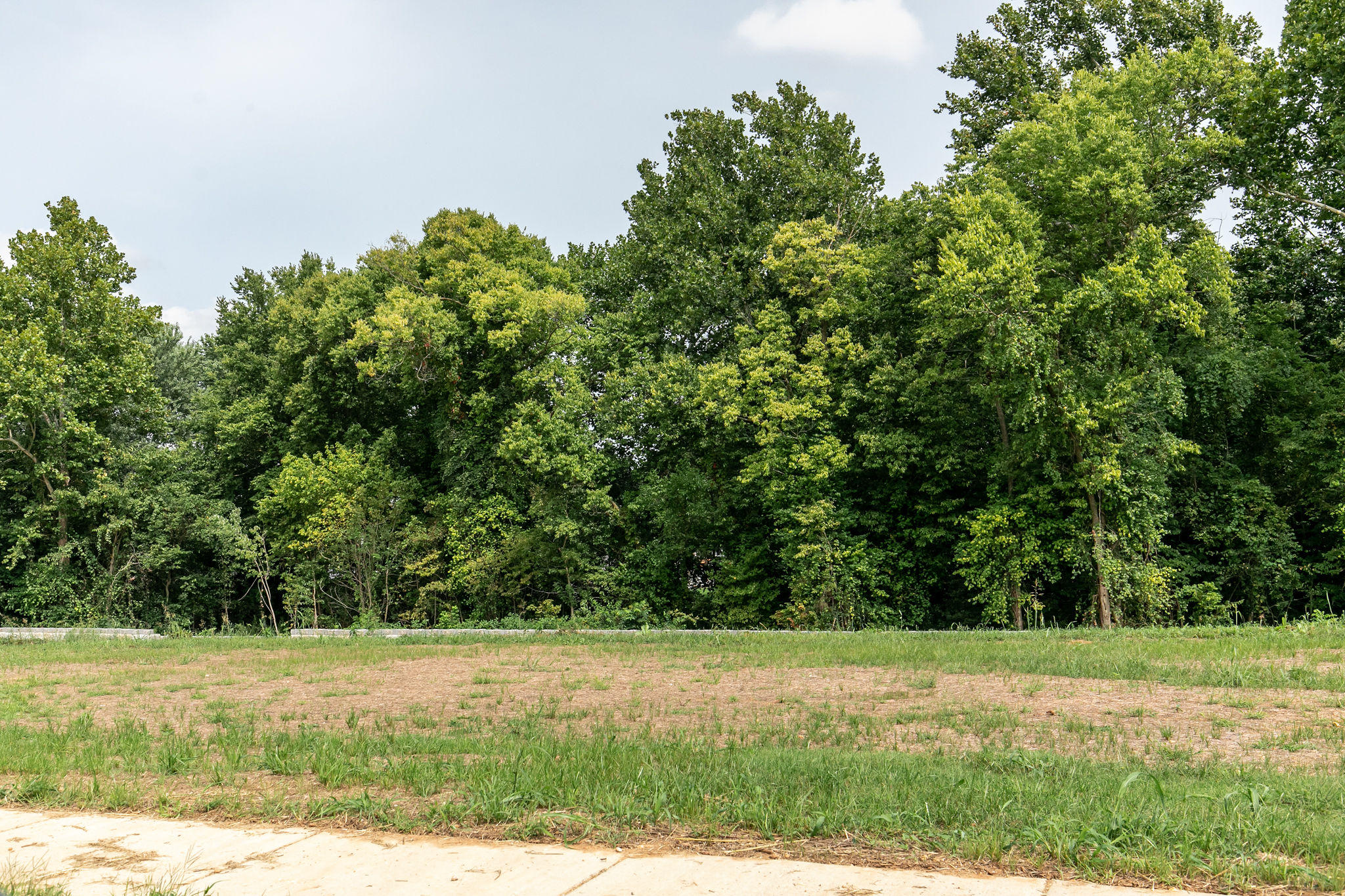 Lot 1 Paragon Court Springfield, MO 65803