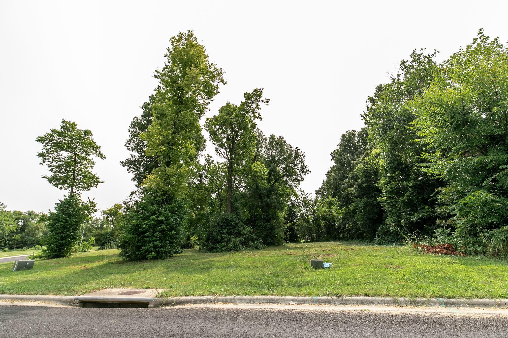 Lot 2 Paragon Court Springfield, MO 65803