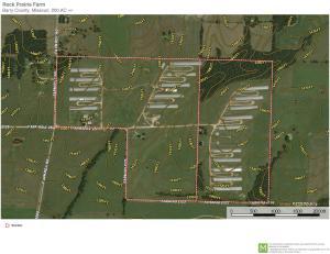 6234 Farm Road 2125, Purdy, MO 65734