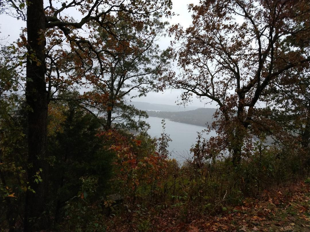 000 Cliffside Drive (lot 2) UNIT (New Well&Septic) Galena, MO 65656