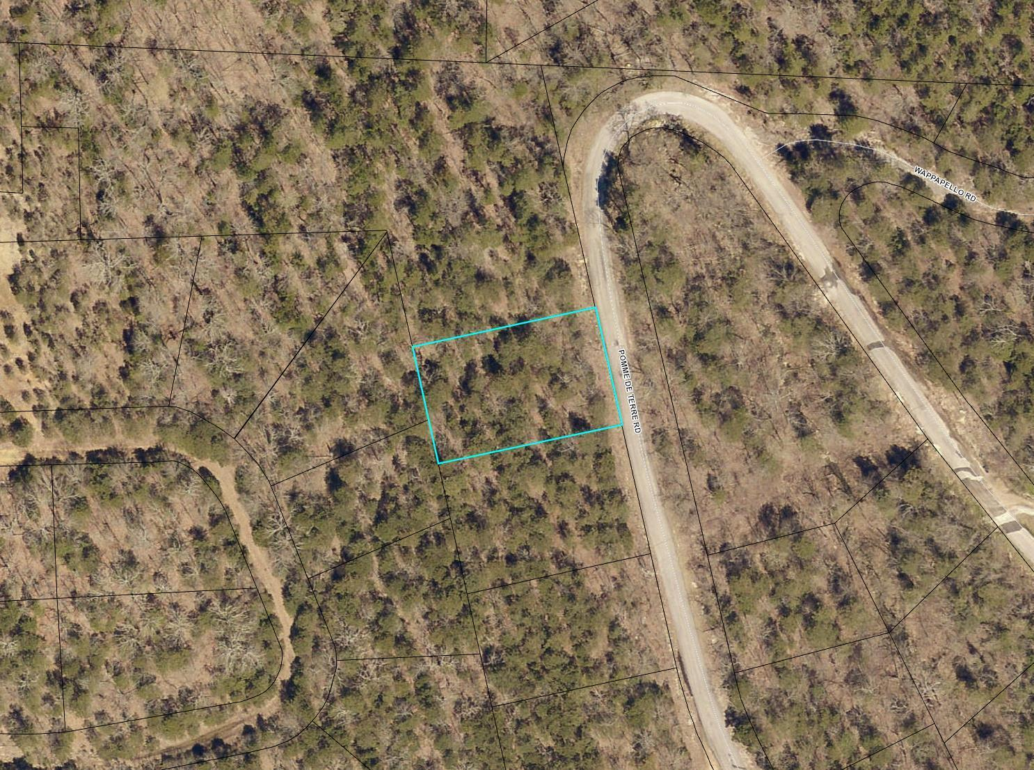 Lot 254 Pomme de Terrace Road Branson, MO 65616