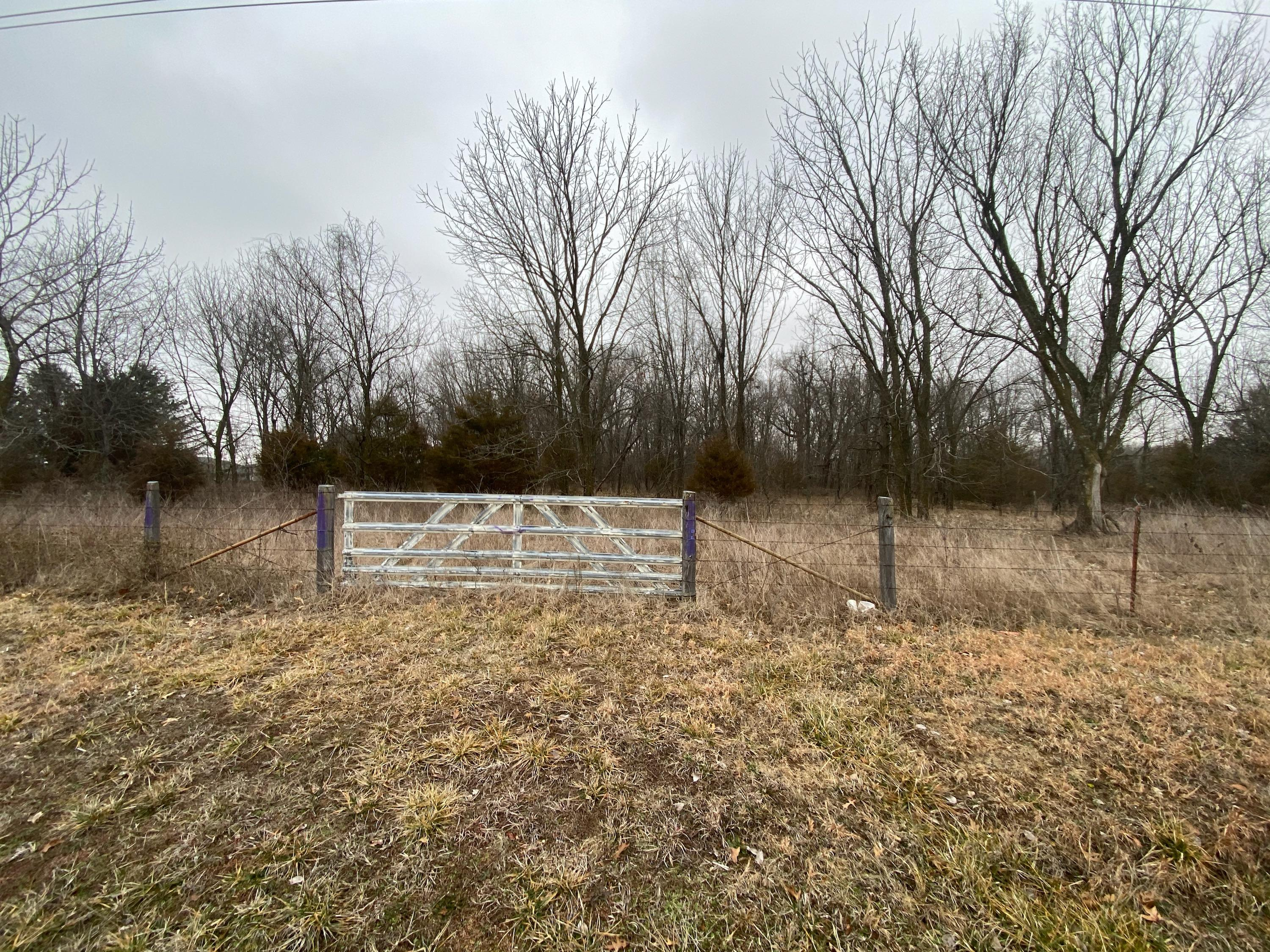 State Highway Zz & Maples Lane Billings, MO 65610