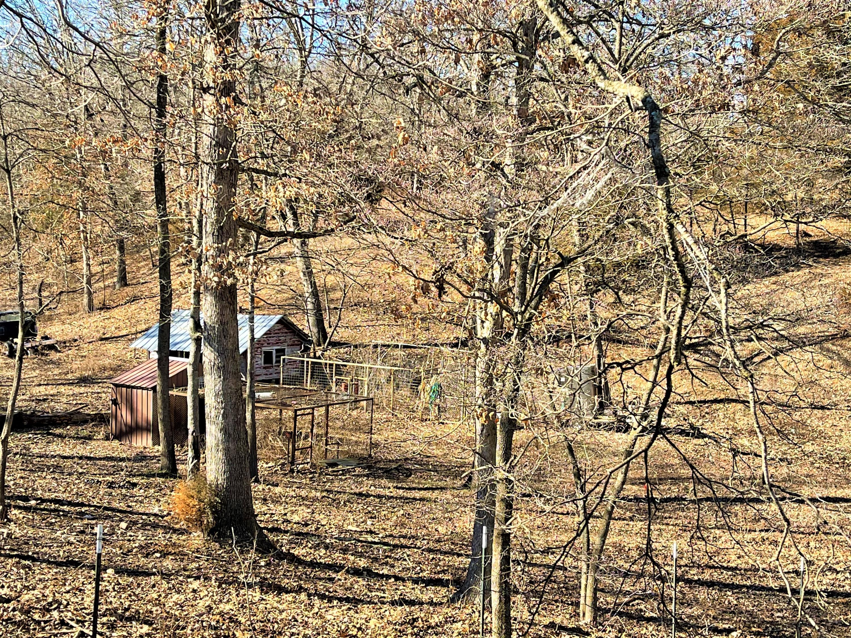 767 Miners Trail Crane, MO 65633