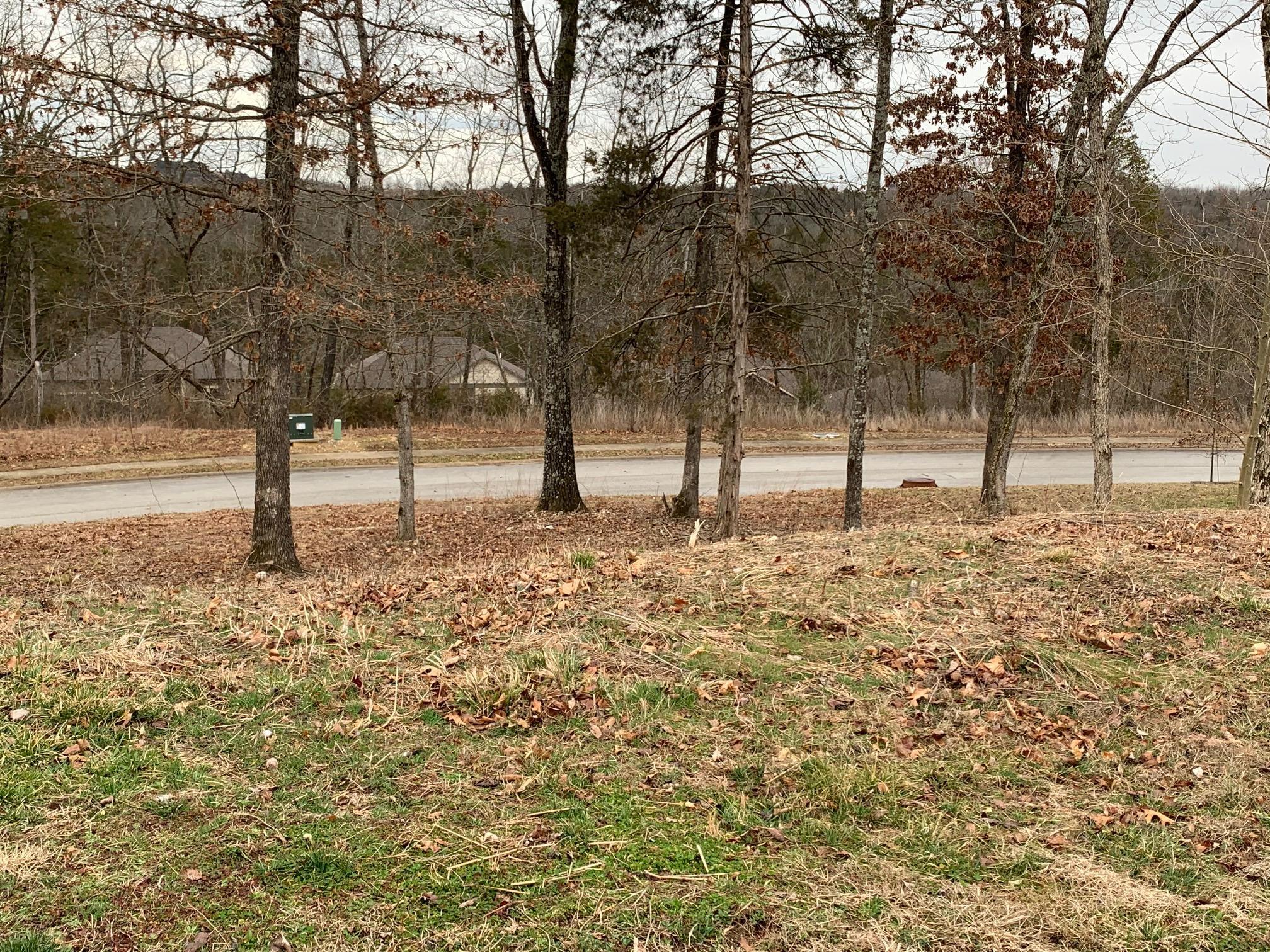 186 Country Ridge Way Branson, MO 65616