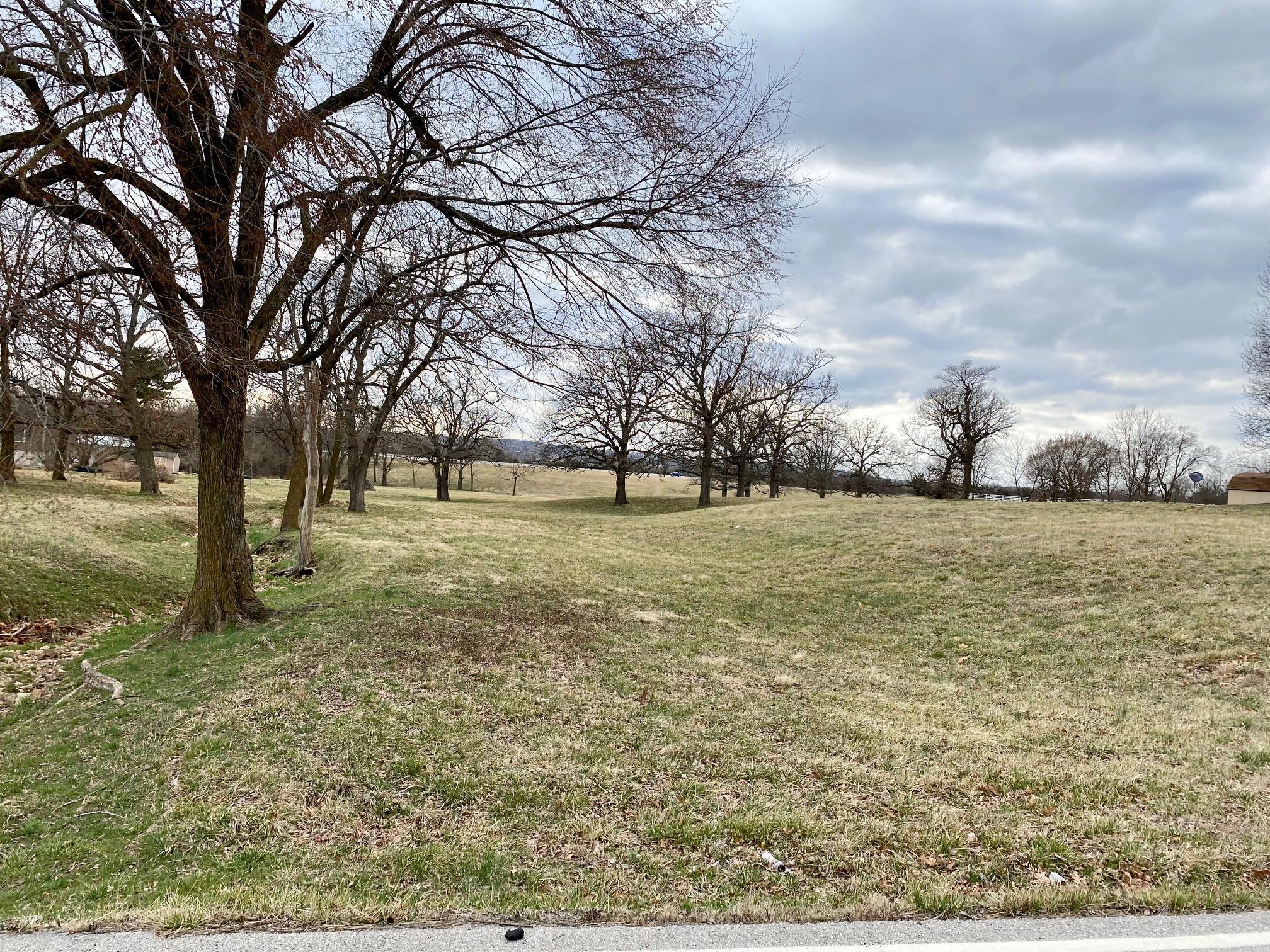 Property for sale at 000 North Farm Road 205, Fair Grove,  Missouri 65648