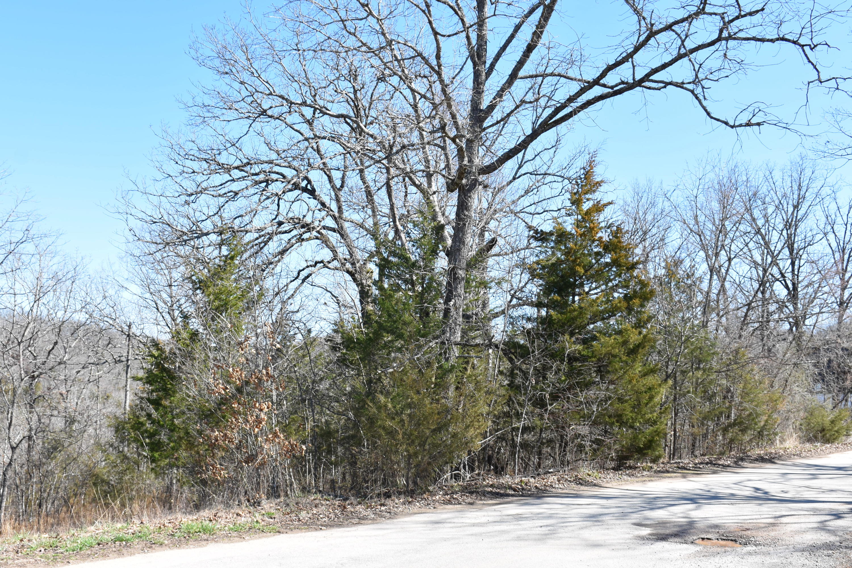 Tbd Lot 160 Rebel Lane Lampe, MO 65681