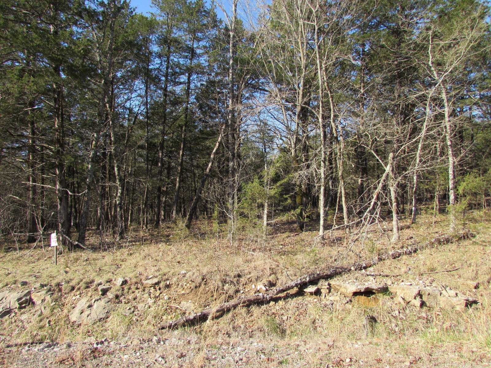 000 Lot 21 Rocky Point Loop Branson, MO 65616